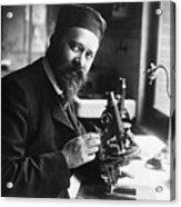 Albert Calmette Working With Microscope Acrylic Print