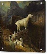 Albert_bierstadt_-_rocky_mountain_goats Acrylic Print