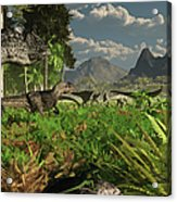 Allosaurus And Diplodocus Dinosaurs Acrylic Print