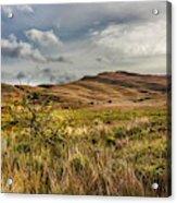 Along The Scottish Highlands Acrylic Print