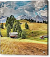 Alpine Beauty Acrylic Print