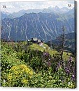 Alpine Flowers At Fellhorn, Allgäu Acrylic Print