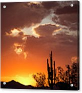 Always Look To The West Acrylic Print