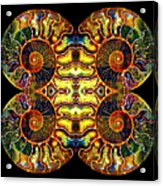 Ammonite Mandela - 044.1 Acrylic Print