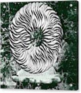 An Abstract Wooden Sculpture Acrylic Print