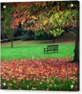 An Autumn Bench At Clyne Gardens Acrylic Print