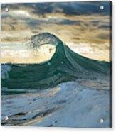 Angler Fish Acrylic Print