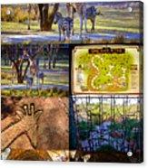 Animal Kingdom Lodge Poster A Acrylic Print