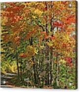 Appalachian Backroads Acrylic Print