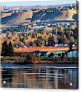 Apple Country Along The Columbia River Acrylic Print