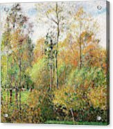 Automne, Peupliers, Eragny - Digital Remastered Edition Acrylic Print