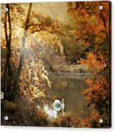 Autumn Afterglow Acrylic Print
