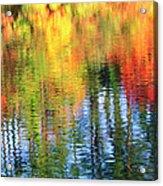 Autumn Color Reflection Acrylic Print