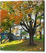 Autumn Day In The Salem Willows Salem Ma Red Acrylic Print