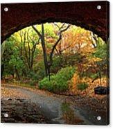 Autumn Fall In Central Park Acrylic Print
