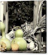 Autumn Farm Stand Acrylic Print