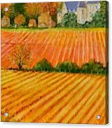 Autumn In French Vineyards Acrylic Print