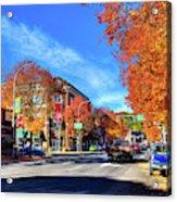 Autumn In Pullman Acrylic Print