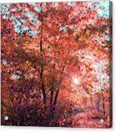 Autumn Path Reimagined Acrylic Print