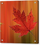 Autumn Spirit Panoramic Acrylic Print