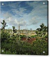 Autumnal Altamaha Acrylic Print