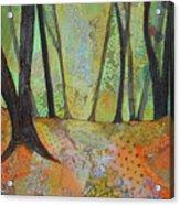 Autumn's Arrival I Acrylic Print