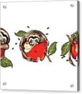 Baby Sloth Meets Apple Acrylic Print