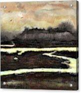 Back Bay Acrylic Print