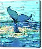 Balene-whales Acrylic Print
