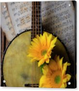 Banjo And Two Sunflowers Acrylic Print