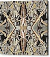 Bark Laces Acrylic Print