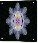 Baroque Fantasy Flowers Ornate Acrylic Print