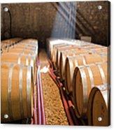 Barrels In Wine Cellar Acrylic Print