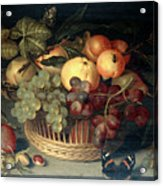 Basket Of Fruit And Admiral Butterfly Acrylic Print
