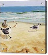 Beach Stroll Acrylic Print