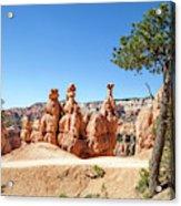Beautiful Bryce Canyon Acrylic Print