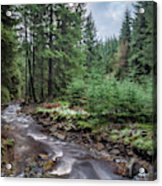 Beautiful Ethereal Style Landscape Image Of Small Brook Flwoing  Acrylic Print