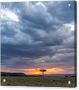 Beautiful Sunset In The Savannah Of Acrylic Print