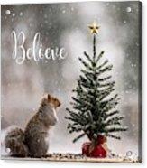 Believe Christmas Tree Squirrel Square Acrylic Print