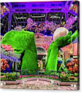 Bellagio Conservatory Spring Display Ultra Wide 2 To 1 Aspect Ratio Acrylic Print