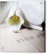 Bible With White Orchid Acrylic Print