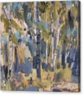 Birch Trees Along The Pond De Melle Acrylic Print
