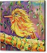 Bird In Nature Acrylic Print