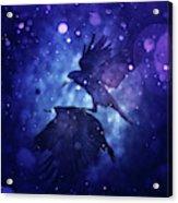 Bird Kingdom  3 Acrylic Print
