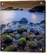 Bird Rock Lajolla II Acrylic Print