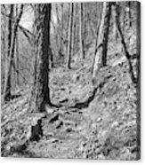 Black And White Mountain Trail Acrylic Print