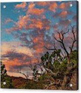 Black Canyon Sunrise Acrylic Print