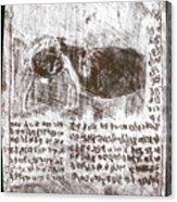 Black Ivory Issue 1b70c Acrylic Print