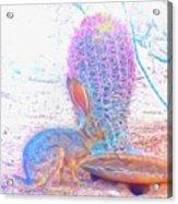 Black-tailed Jackrabbit Acrylic Print