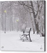 Blizzard In The Park Acrylic Print